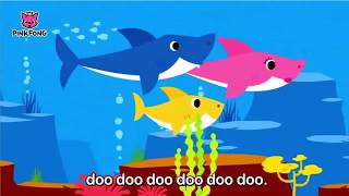 Baby Shark Song | The Original | Kids Sing and Dance