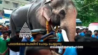 2 Week ban for Thechikottukavu Ramachandran for attending in temple festival