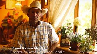 David Alonso   Clínica De Doma Natural   Oaxaca 2016