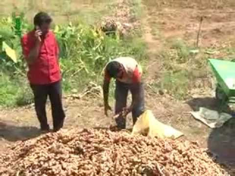 PRATHIBHA TURMERIC: A SUCCESS STORY-English.flv