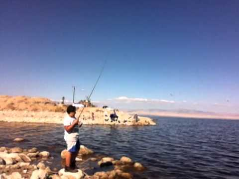 Salton sea fishing nov 2013 youtube for Salton sea fishing report