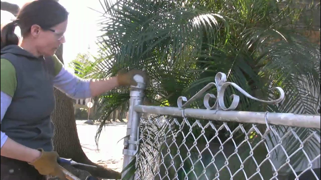 Using Old Chainlink Fence For New Wood One Day 1 Youtube