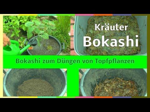 Bokashi zum Einpflanzen für die Physalis nutzen und Flüssigdünger aus dem Bokashi gewinnen