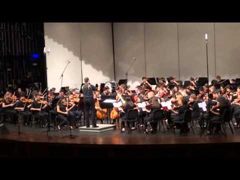 Adlai E Stevenson High School Orchestra with Radioactive 2014