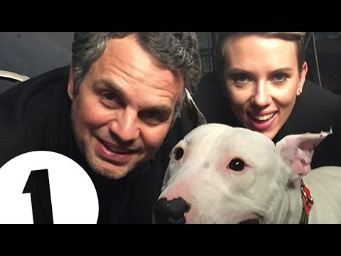 Pig (the dog) interviews Scarlett Johansson and Mark Ruffalo