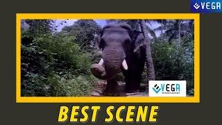 Guruvayur Kesavan Gets Angry ||  Guruvayur Kesavan