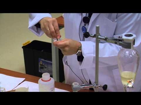 Ciencia Primaria - Experimento 5 - Columna de filtración en gel