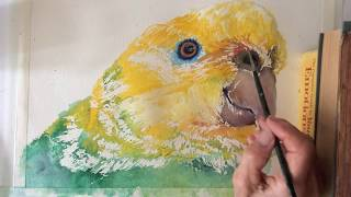 Amazon Parrot watercolor tutorial, how to paint step by step