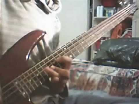 Red Hot Chili Peppers - Woodstock Bass