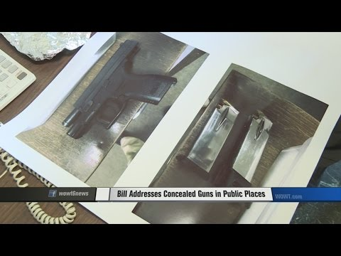 Bill Addresses Concealed Guns in Public Places