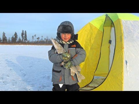 север рыбалка на большую рыбу видео