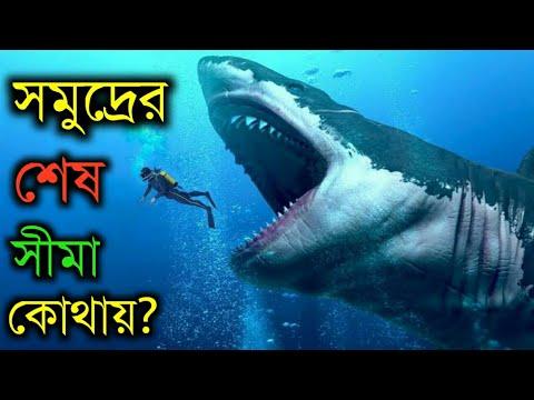 মহাসাগর কতটা গভীর- তা জানলে আপনি অবাক হতে বাধ্য হবেন   How Deep Is the Ocean in Bangla