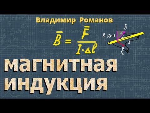 физика МАГНИТНАЯ ИНДУКЦИЯ 11 класс Перышкин