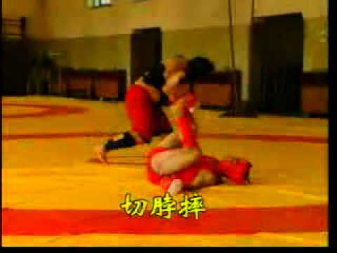 散打 - Wushu Sanda ( (散手 Sanshou) - Basic Throwing Techniques of Sanda Image 1