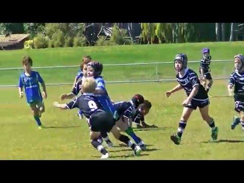 Junior Rugby League U7 April 23rd 2016