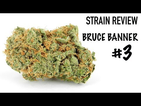 Strain Review: Bruce Banner #3