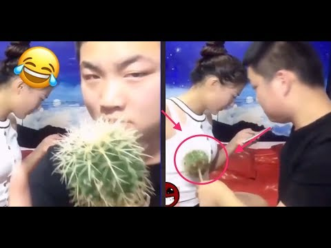 Best FUNNY Videos 2017..Ever try not to laugh challenge.Funny Prank compilation..!!!Part 3