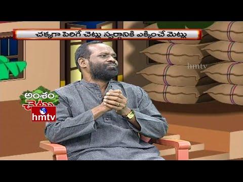 Singer Jaya Raju on Importance of Trees | HMTV Janaganam