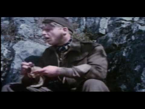 Force 10 from Navarone is listed (or ranked) 48 on the list The Greatest World War II Movies of All Time