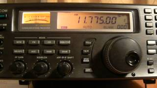 11775khz,Caribbean Beacon(University Network),Anguilla,English.
