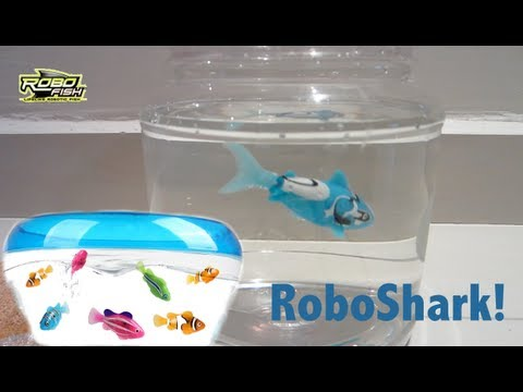 Robofish (Shark) by Zuru