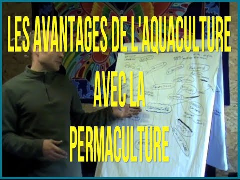 Introduction à l'Aquaculture avec la Permaculture
