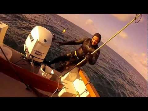 spearfishing hog fish and 78lb black grouper bermuda