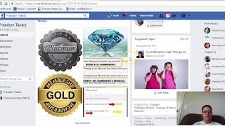 Power Lead System - FreedomTakers Facebook Group Overview