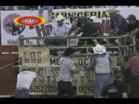 Torazo¡¡ el Olotito de Memo Ocampo [Puros Porrazos]