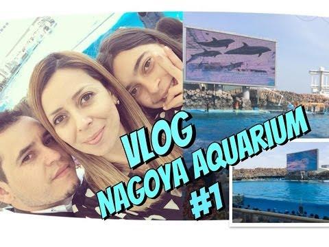 Vlog- Nagoya Aquarium #1