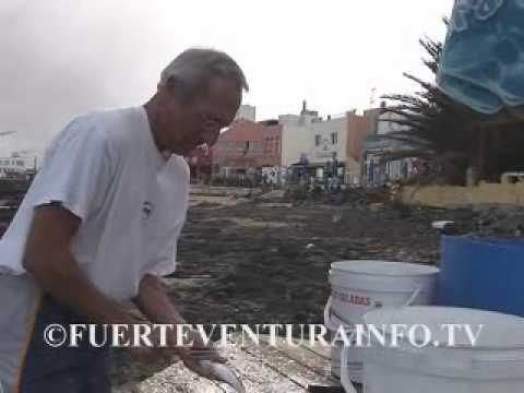 Video van Corralejo Fuerteventura