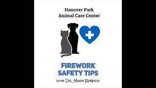Firework Safety Tips for Pets