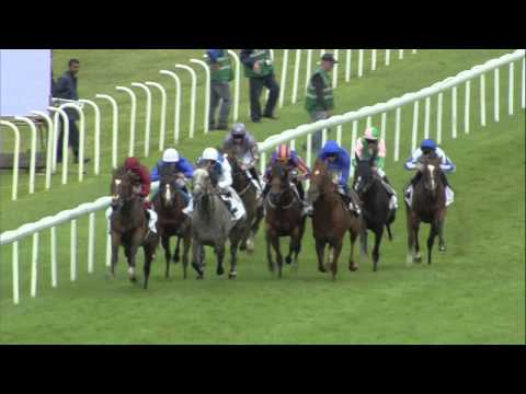 2015 Sussex Stakes - Solow - Racing UK
