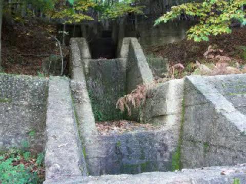 Delianuova e dintorni flora fauna e cemento