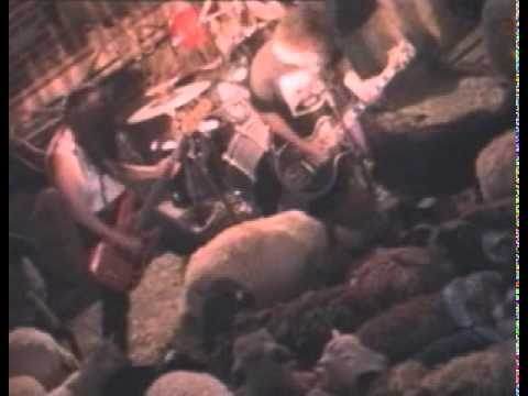 Melvins - Honey Bucket