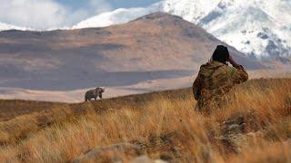 Deosai National Park - Home of The Himalayan brown bears