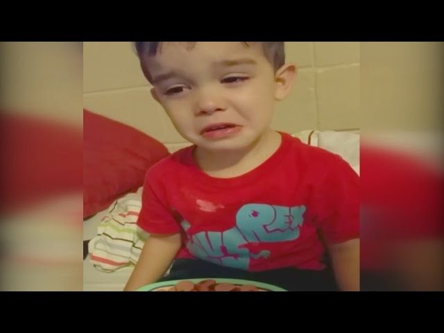 Son Bursts Into Tears Because His Dinner Is 'Just Too Cute' To Eat