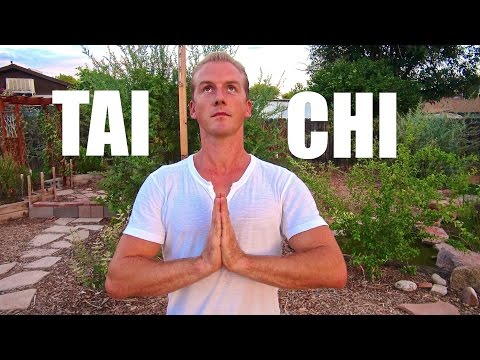 Tai Chi For Beginners - Chinese Tai Chi Chuan video