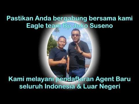 BUMSS peluang bisnis tour travel dan mutlipayment di Indonesia