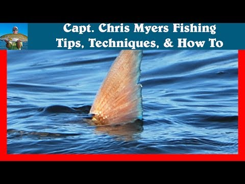 Mosquito Lagoon Fishing Guide - Tailing Redfish