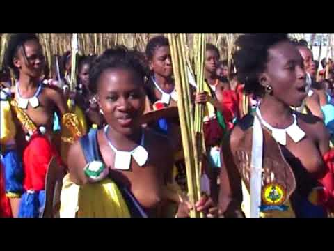 SWAZILAND YOUNG GIRLS FOR REED DANCE THIS YEAR thumbnail