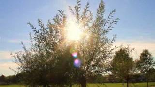 Ein Augenblick der Seelenruhe ☿ A moment of serenity (Instrumental Piano Music)