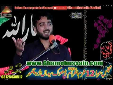 Zakir Ali Ahmad Joya | 12 Muharram 2018 | Dhok Syedan Chakwal
