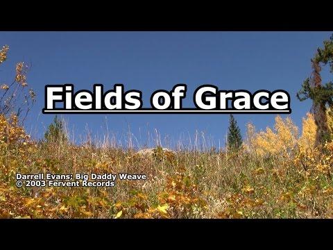 Fields of Grace - Big Daddy Weave - Lyrics