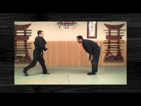 Ninjutsu - Kihon Happo - Henka - Ninja Training - Learn Bujinkan - Blackbelt Image 1