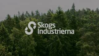 The Swedish Forest Industries Vision