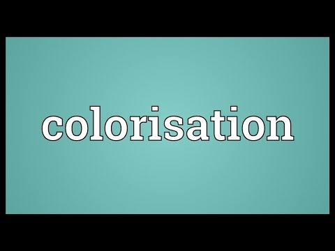 Header of Colorisation
