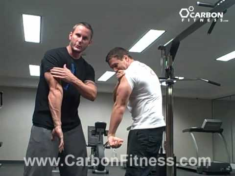 Crazy Tricep Workout-Get Horseshoe Triceps in No Time! Image 1