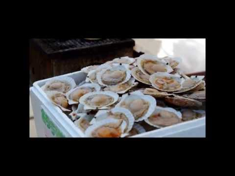 Japanese sea food,oyster
