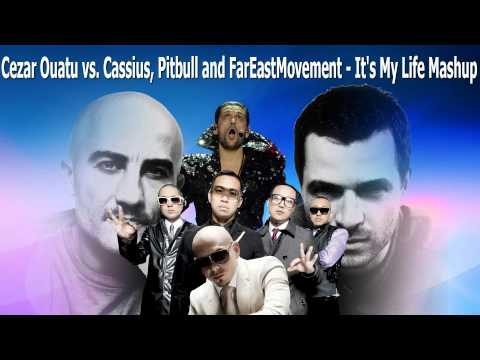 Cezar Ouatu vs Cassius, Pitbull and FarEastMovement - It's My Life Mashup